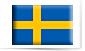 cursus zweeds